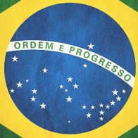 Brazilian Flag Cover