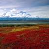 brilliant colors of denali national park alaska,nature landscape Wallpapers, nature landscape Wallpaper for Desktop, PC, Laptop. nature landscape Wallpapers HD Wallpapers, High Definition Quality Wallpapers of nature landscape Wallpapers.