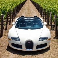 Bugatti Veyron 164 Grand Sport 2010 Wallpaper