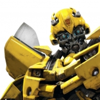 Bumble Bee Wallpapers