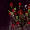Download bunch of red roses, bunch of red roses  Wallpaper download for Desktop, PC, Laptop. bunch of red roses HD Wallpapers, High Definition Quality Wallpapers of bunch of red roses.
