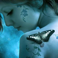 Butterfly 9 Hd Wallpapers