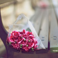 Carnations Bouquet On A Bench Wallpaper