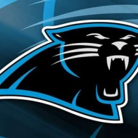 Carolina Panther Cover
