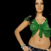 Download celina jaitley in green bra, celina jaitley in green bra  Wallpaper download for Desktop, PC, Laptop. celina jaitley in green bra HD Wallpapers, High Definition Quality Wallpapers of celina jaitley in green bra.