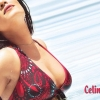 Download celina jaitley, celina jaitley  Wallpaper download for Desktop, PC, Laptop. celina jaitley HD Wallpapers, High Definition Quality Wallpapers of celina jaitley.