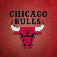 Chicago Bulls Cover
