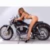 Chopper With Hot Babe Wallpaper
