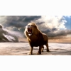Chronicles Of Narnia The Dawn Treader Wallpaper