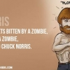 Download chuck norris zombie cover, chuck norris zombie cover  Wallpaper download for Desktop, PC, Laptop. chuck norris zombie cover HD Wallpapers, High Definition Quality Wallpapers of chuck norris zombie cover.