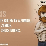 Chuck Norris Zombie Cover