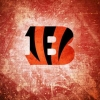 Download cincinnati bengals cover, cincinnati bengals cover  Wallpaper download for Desktop, PC, Laptop. cincinnati bengals cover HD Wallpapers, High Definition Quality Wallpapers of cincinnati bengals cover.