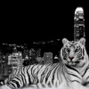 Download city dark tiger wallpapers, city dark tiger wallpapers Free Wallpaper download for Desktop, PC, Laptop. city dark tiger wallpapers HD Wallpapers, High Definition Quality Wallpapers of city dark tiger wallpapers.