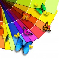 Colorful Butterflies Wallpapers