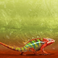Colorful Creature Wallpapers
