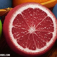 Colorful Fruit Cover