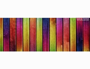 Colorful Wall Cover