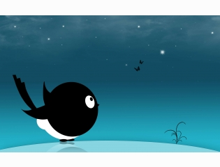 Creative Black Bird Hd Wallpapers