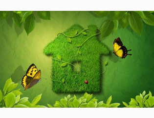 Creative Green House Wallpapers