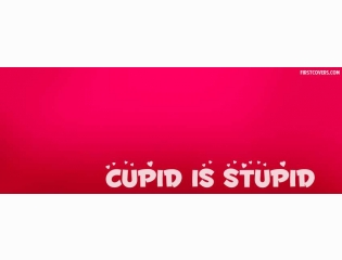 Cupid Is Stupid Cover