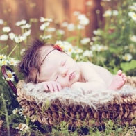Cute Baby Wallpapers 17
