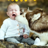 Cute Baby Wallpapers 18