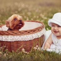Cute Baby Wallpapers 41