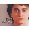Daniel Radclifft Wallpaper