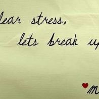 Dear Stress Lets Break Up Cover