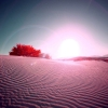 Download desert flare wallpapers, desert flare wallpapers Free Wallpaper download for Desktop, PC, Laptop. desert flare wallpapers HD Wallpapers, High Definition Quality Wallpapers of desert flare wallpapers.