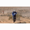 Desert Racers Motorcross Wallpaper