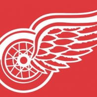 Detroitred Wings Cover