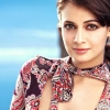 Download diya mirza in colorful dresses, diya mirza in colorful dresses  Wallpaper download for Desktop, PC, Laptop. diya mirza in colorful dresses HD Wallpapers, High Definition Quality Wallpapers of diya mirza in colorful dresses.