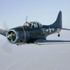 Download douglas sbs dauntless wallpaper, douglas sbs dauntless wallpaper  Wallpaper download for Desktop, PC, Laptop. douglas sbs dauntless wallpaper HD Wallpapers, High Definition Quality Wallpapers of douglas sbs dauntless wallpaper.