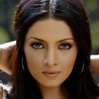 Download Celina Jaitley Hot Hd Wallpapers