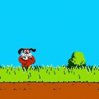 Duck Hunt Cover