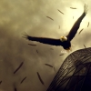 Download eagle flight wallpapers, eagle flight wallpapers Free Wallpaper download for Desktop, PC, Laptop. eagle flight wallpapers HD Wallpapers, High Definition Quality Wallpapers of eagle flight wallpapers.