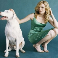 Elizabeth Banks Dog Wallpaper