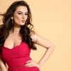 evelyn sharma bollywood actress, evelyn sharma bollywood actress  Wallpaper download for Desktop, PC, Laptop. evelyn sharma bollywood actress HD Wallpapers, High Definition Quality Wallpapers of evelyn sharma bollywood actress.