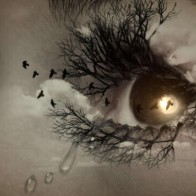 Eyes Makeup Hd Wallpaper 23