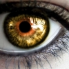 eyes makeup hd wallpaper 3, Wallpaper download for Desktop, PC, Laptop. eyes makeup hd wallpaper 3 HD Wallpapers, High Definition Quality Wallpapers of eyes makeup hd wallpaper 3.