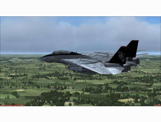 F 14 Tomcat Vf 101 Grim Reapers Wallpaper
