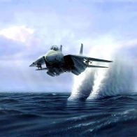 F14 Tomcat Jet Flying Low Over The Ocean Wallpaper