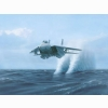 F14 Tomcat Low Flying Wallpaper