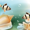 fish hd wallpaper 26,nature landscape Wallpapers, nature landscape Wallpaper for Desktop, PC, Laptop. nature landscape Wallpapers HD Wallpapers, High Definition Quality Wallpapers of nature landscape Wallpapers.
