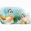 Fish Hd Wallpaper 26