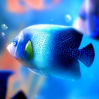 Fish Hd Wallpaper 35