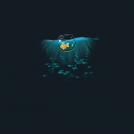 Fish Hd Wallpaper 46