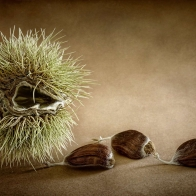 Food Wallpaper Hd 202