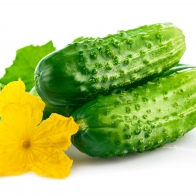 Food Wallpaper Hd 240
